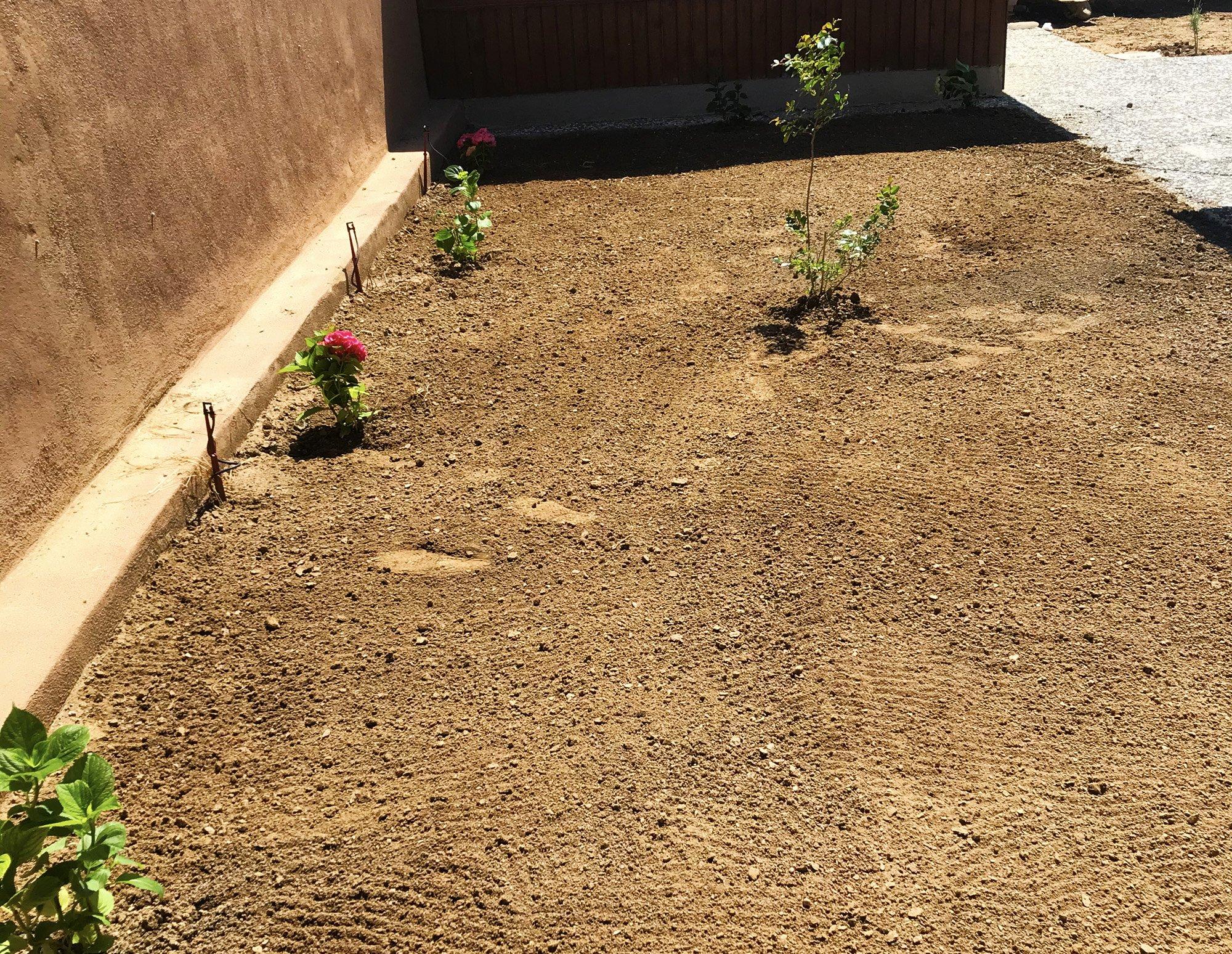 İznik Bahçe Düzenleme ve Bakım